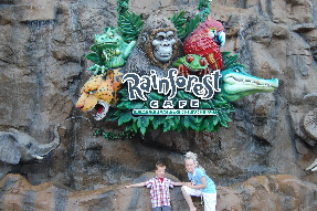 WDW - DTD: Rainforest Cafe
